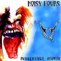 V.A. - Noisy Hours-Indigestible Sounds